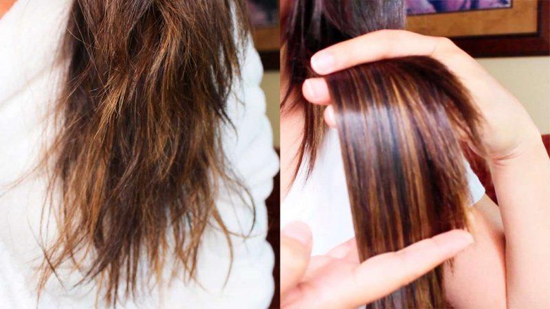 tratamientos caseros para el cabello seco